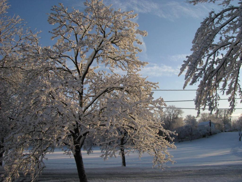 Winter in Battle Creek, Michigan